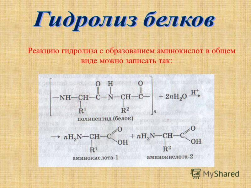 Реакцию гидролиза с образованием аминокислот в общем виде можно записать так: