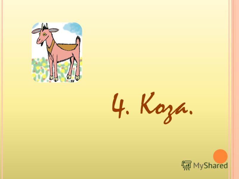 4. Коза.