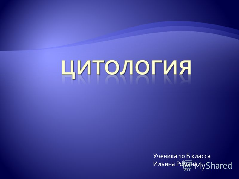 Ученика 10 Б класса Ильина Романа