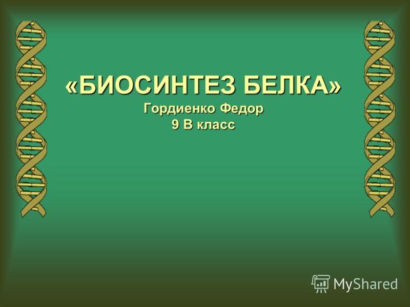 «БИОСИНТЕЗ БЕЛКА» Гордиенко Федор 9 В класс