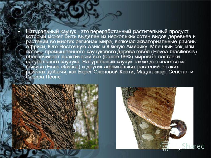 Натуральный каучук - это переработанный растительный продукт, который может быть выделен из нескольких сотен видов деревьев и растений во многих регионах мира, включая экваториальные районы Африки, Юго-Восточную Азию и Южную Америку. Млечный сок, или
