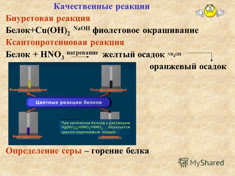 Качественные реакции Биуретовая реакция Белок+Сu(OH) 2 NaOH фиолетовое окрашивание Ксантопротеиновая реакция Белок + НNO 3 нагревание желтый осадок NH 4 OH оранжевый осадок Определение серы – горение белка