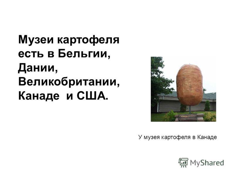 Музеи картофеля есть в Бельгии, Дании, Великобритании, Канаде и США. У музея картофеля в Канаде