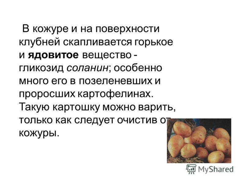 В кожуре и на поверхности клубней скапливается горькое и ядовитое вещество - гликозид соланин; особенно много его в позеленевших и проросших картофелинах. Такую картошку можно варить, только как следует очистив от кожуры.