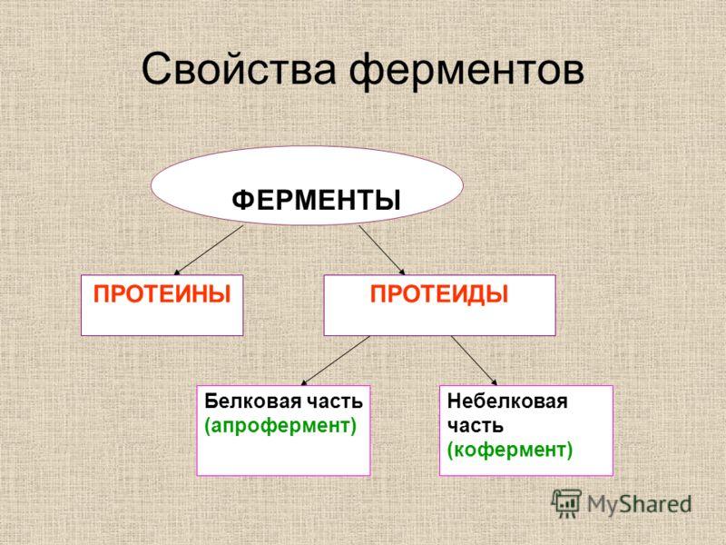 Свойства ферментов ФЕРМЕНТЫ ПРОТЕИНЫПРОТЕИДЫ Белковая часть (апрофермент) Небелковая часть (кофермент)