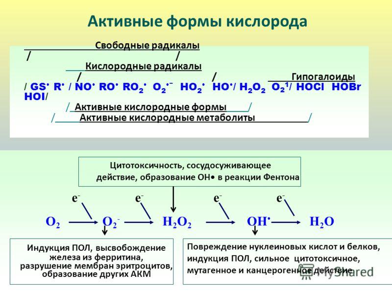e - e - e - e - O 2 O 2 - H 2 O 2 OH H 2 O Индукция ПОЛ, высвобождение железа из ферритина, разрушение мембран эритроцитов, образование других АКМ Повреждение нуклеиновых кислот и белков, индукция ПОЛ, сильное цитотоксичное, мутагенное и канцерогенно