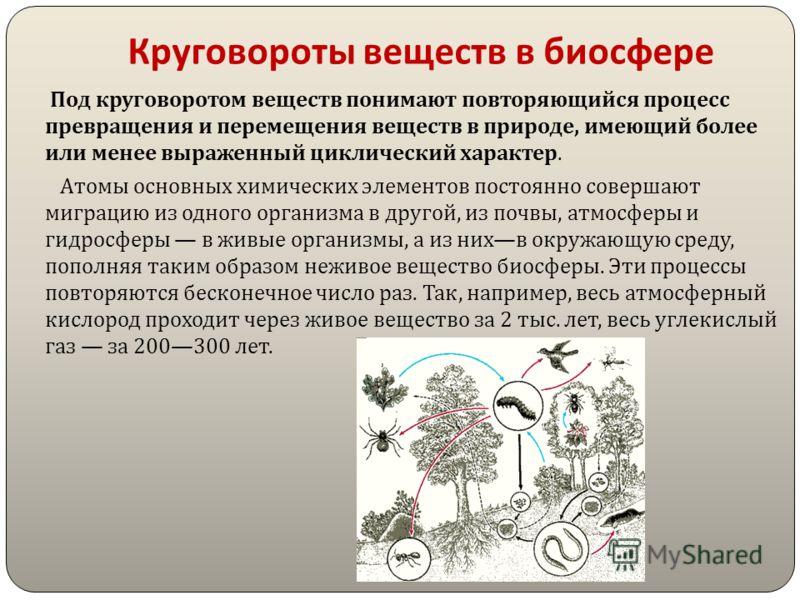 Ответьте на вопросы Какие оболочки Земли входят в состав биосферы, какие – не входят ? Каковы верхние и нижние пределы жизни во всех оболочках Земли ? Каково значение озонового экрана в атмосфере ? Охарактеризуйте распределение живых организмов в наз