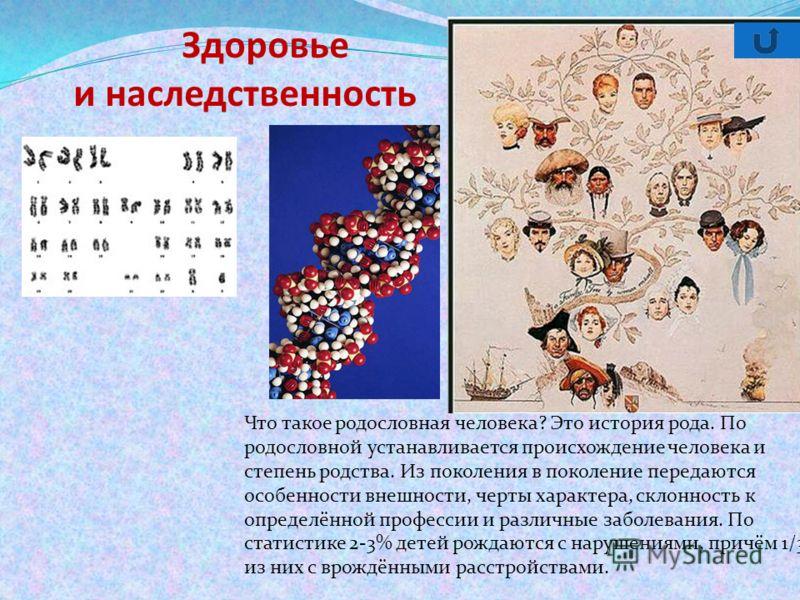 Здоровье и наследственность Что такое родословная человека? Это история рода. По родословной устанавливается происхождение человека и степень родства. Из поколения в поколение передаются особенности внешности, черты характера, склонность к определённ