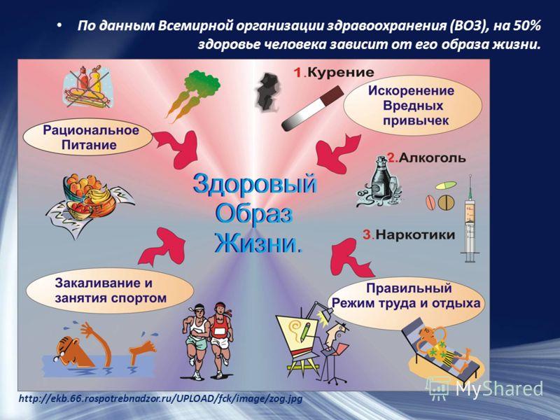 По данным Всемирной организации здравоохранения (ВОЗ), на 50% здоровье человека зависит от его образа жизни. http://ekb.66.rospotrebnadzor.ru/UPLOAD/fck/image/zog.jpg