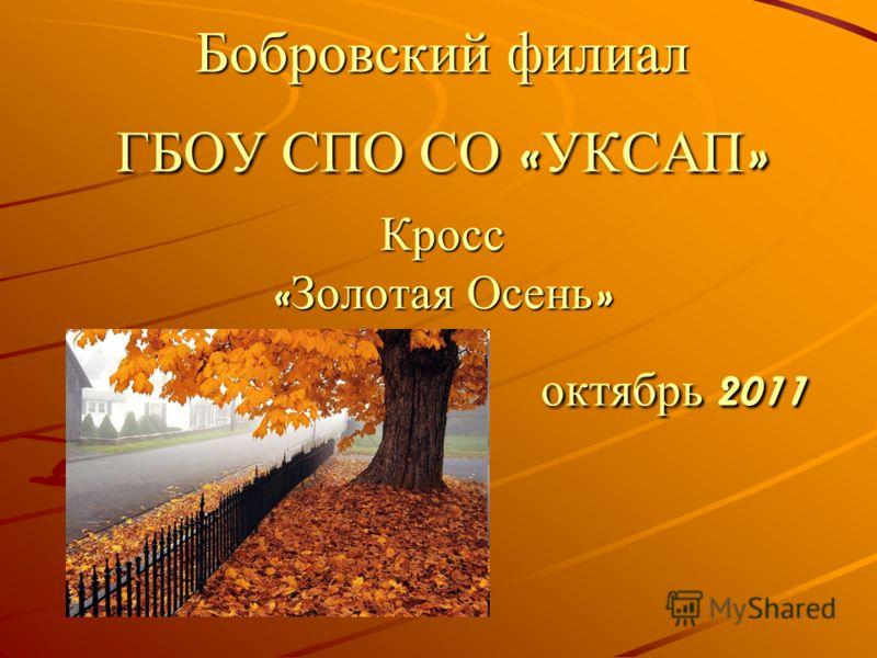 Бобровский филиал ГБОУ СПО СО « УКСАП » Кросс « Золотая Осень » октябрь 2011