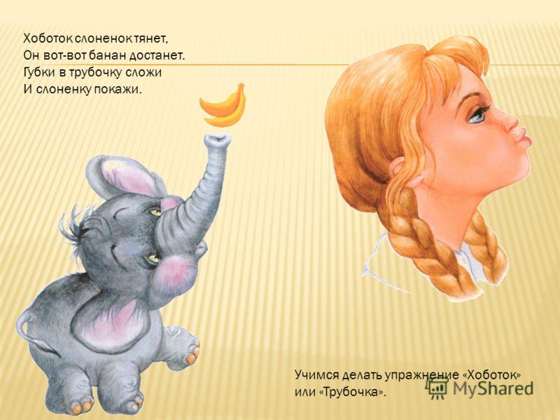 Хоботок слоненок тянет, Он вот-вот банан достанет. Губки в трубочку сложи И слоненку покажи. Учимся делать упражнение «Хоботок» или «Трубочка».
