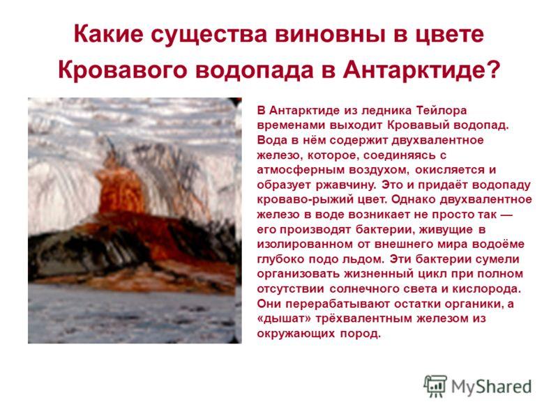 Какие существа виновны в цвете Кровавого водопада в Антарктиде? В Антарктиде из ледника Тейлора временами выходит Кровавый водопад. Вода в нём содержит двухвалентное железо, которое, соединяясь с атмосферным воздухом, окисляется и образует ржавчину.