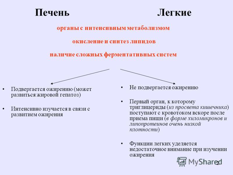 2 Печень Легкие органы с интенсивным метаболизмом окисление и синтез липидов наличие сложных ферментативных систем Подвергается ожирению (может развиться жировой гепатоз) Интенсивно изучается в связи с развитием ожирения Не подвергается ожирению Перв
