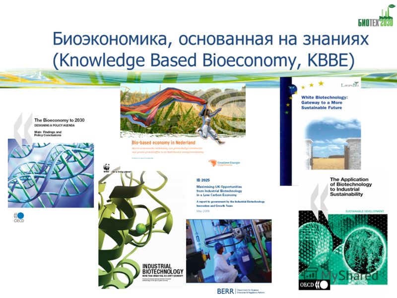 Биоэкономика, основанная на знаниях (Knowledge Based Bioeconomy, KBBE)
