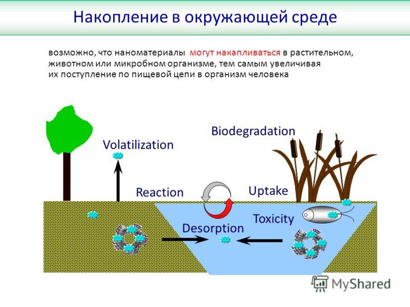 Reaction Uptake Biodegradation Volatilization Desorption Toxicity Накопление в окружающей среде возможно, что наноматериалы могут накапливаться в растительном, животном или микробном организме, тем самым увеличивая их поступление по пищевой цепи в ор