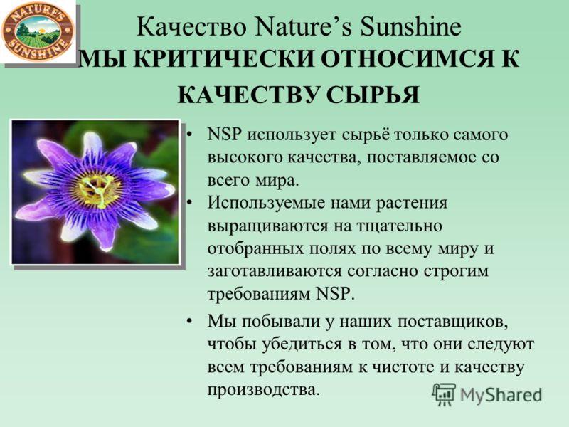 Качество Natures Sunshine МЫ КРИТИЧЕСКИ ОТНОСИМСЯ К КАЧЕСТВУ СЫРЬЯ NSP использует сырьё только самого высокого качества, поставляемое со всего мира. Используемые нами растения выращиваются на тщательно отобранных полях по всему миру и заготавливаются