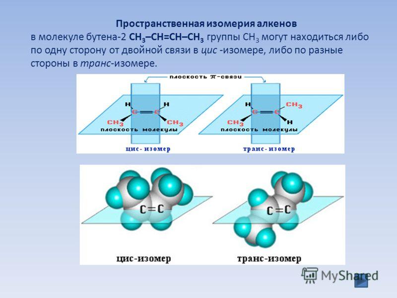 Пространственная изомерия алкенов в молекуле бутена-2 СН 3 –СН=СН–СН 3 группы СН 3 могут находиться либо по одну сторону от двойной связи в цис -изомере, либо по разные стороны в транс-изомере.