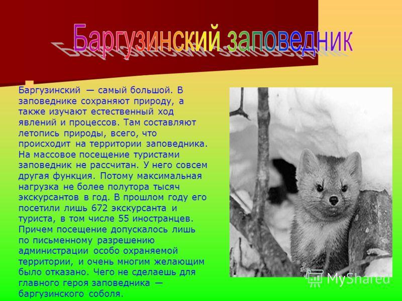 Среди заповедников Бурятии Баргузинский самый большой. В заповеднике сохраняют природу, а также изучают естественный ход явлений и процессов. Там составляют летопись природы, всего, что происходит на территории заповедника. На массовое посещение тури