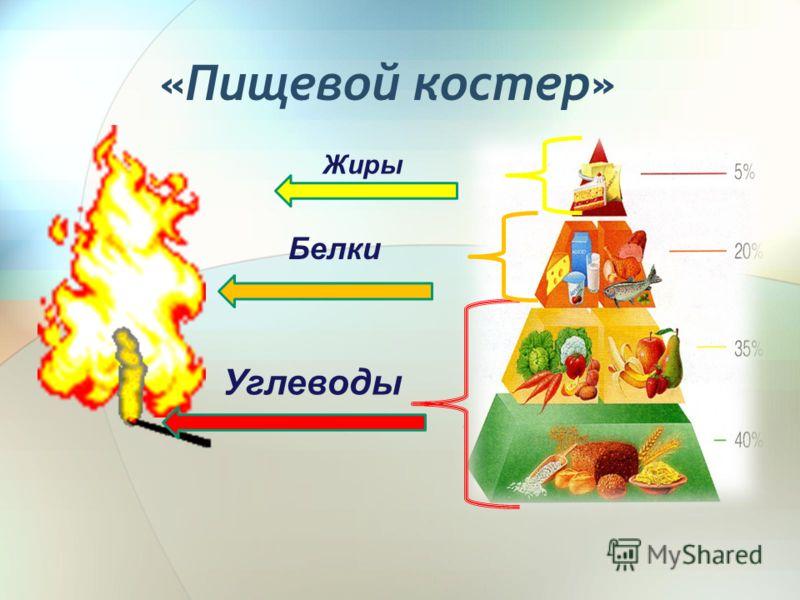 «Пищевой костер» Жиры Белки Углеводы