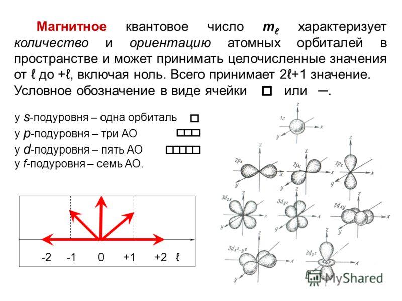 -2 -1 0 +1 +2 Магнитное квантовое число m характеризует количество и ориентацию атомных орбиталей в пространстве и может принимать целочисленные значения от  до +, включая ноль. Всего принимает 2+1 значение. Условное обозначение в виде ячейки или. у