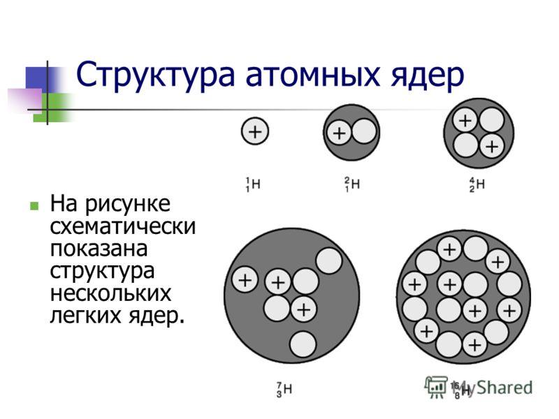 Структура атомных ядер На рисунке схематически показана структура нескольких легких ядер.