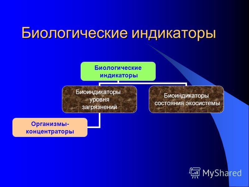 Биологические индикаторы Биологические индикаторы Биоиндикаторы уровня загрязнений Организмы- концентраторы Биоиндикаторы состояния экосистемы