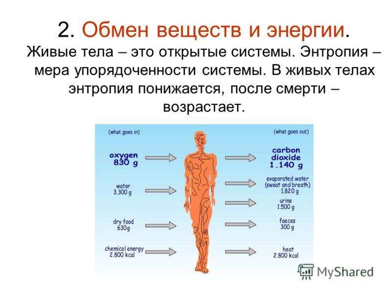 2. Обмен веществ и энергии. Живые тела – это открытые системы. Энтропия – мера упорядоченности системы. В живых телах энтропия понижается, после смерти – возрастает.