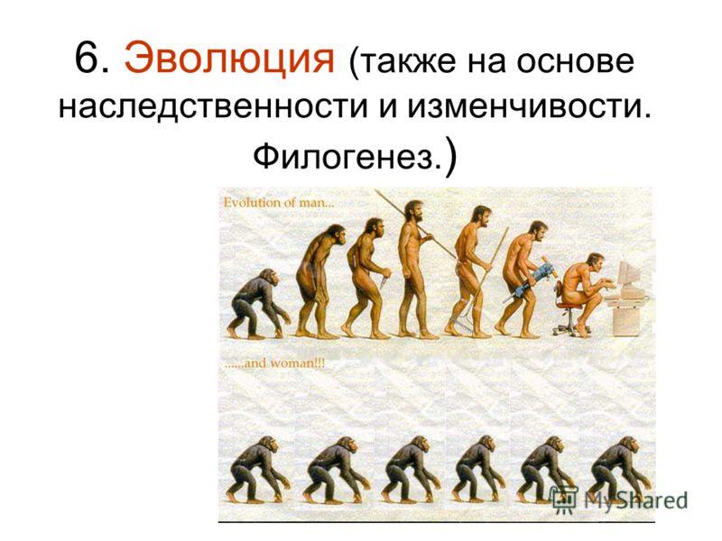 6. Эволюция (также на основе наследственности и изменчивости. Филогенез. )