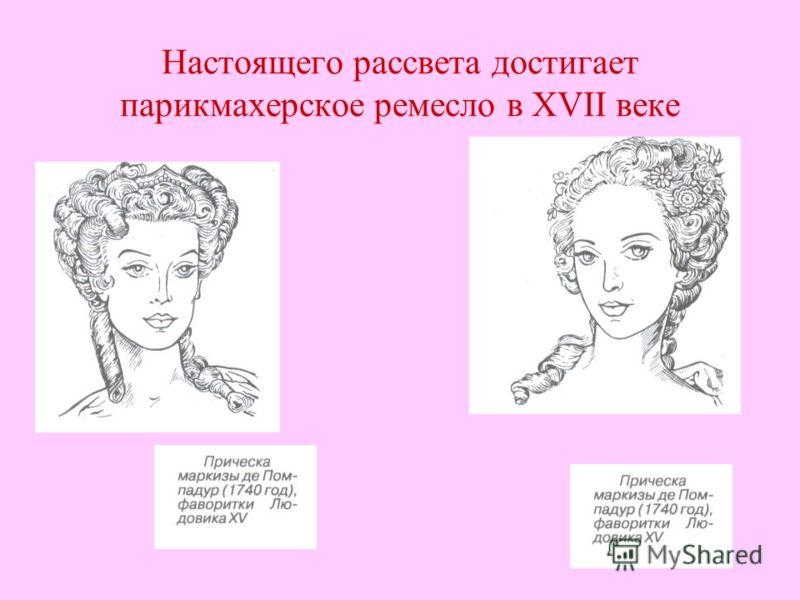 Настоящего рассвета достигает парикмахерское ремесло в XVII веке