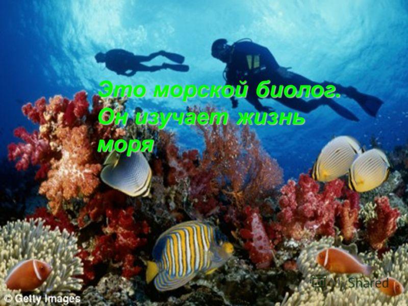 Это морской биолог. Он изучает жизнь моря
