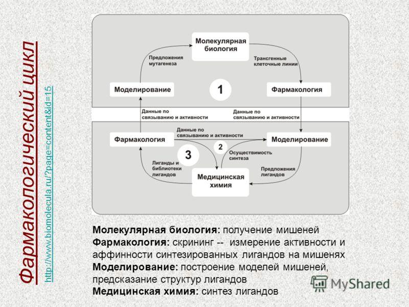 Молекулярная биология: получение мишеней Фармакология: скрининг -- измерение активности и аффинности синтезированных лигандов на мишенях Моделирование: построение моделей мишеней, предсказание структур лигандов Медицинская химия: синтез лигандов Фарм
