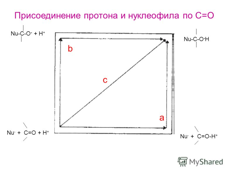 Nu-C-O - + H + Nu-C-O - H Nu - + C=O + H + Nu - + C=O-H + a c b Присоединение протона и нуклеофила по С=О