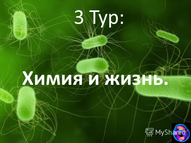 3 Тур: Химия и жизнь.
