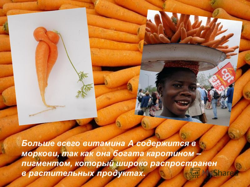 Больше всего витамина А содержится в моркови, так как она богата каротином – пигментом, который широко распространен в растительных продуктах.