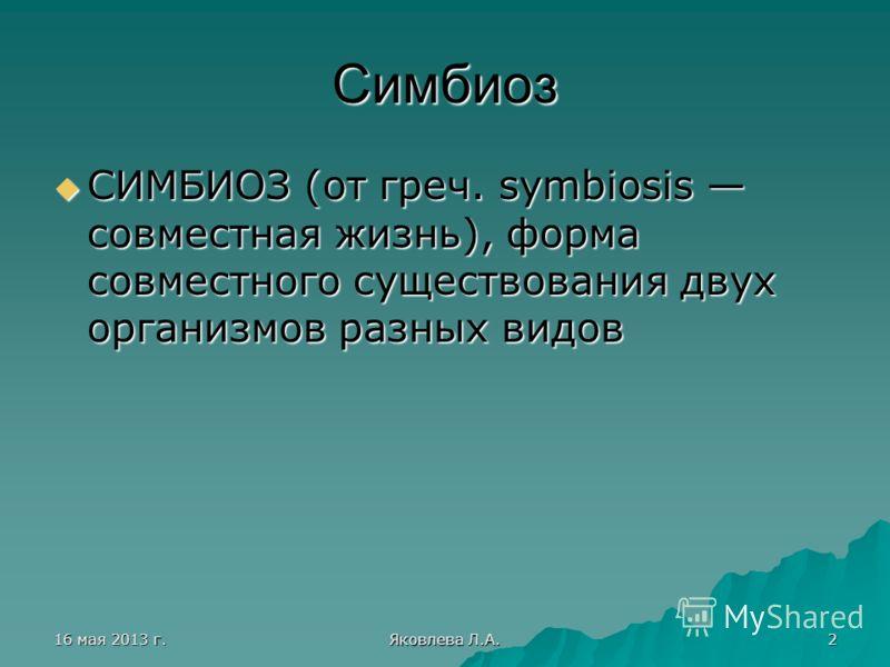 16 мая 2013 г.16 мая 2013 г.16 мая 2013 г.16 мая 2013 г. Яковлева Л.А. 2 Симбиоз СИМБИОЗ (от греч. symbiosis совместная жизнь), форма совместного существования двух организмов разных видов СИМБИОЗ (от греч. symbiosis совместная жизнь), форма совместн