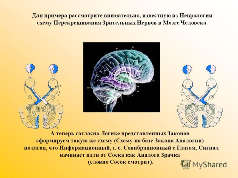 Для примера рассмотрите внимательно, известную из Неврологии схему Перекрещивания Зрительных Нервов в Мозге Человека. А теперь согласно Логике представленных Законов сформируем такую же схему (Схему на базе Закона Аналогии) полагая, что Информационны