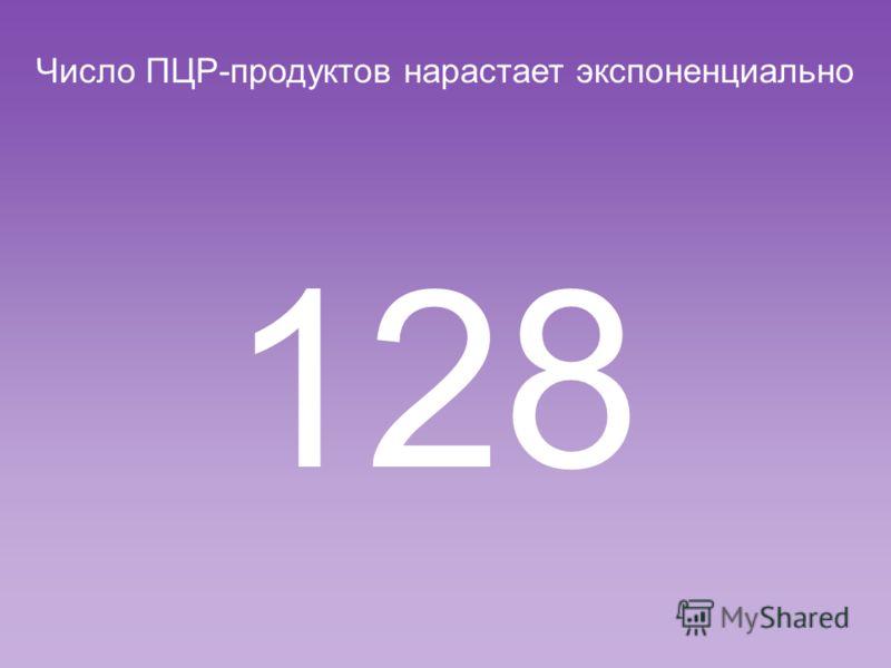 Число ПЦР-продуктов нарастает экспоненциально 64