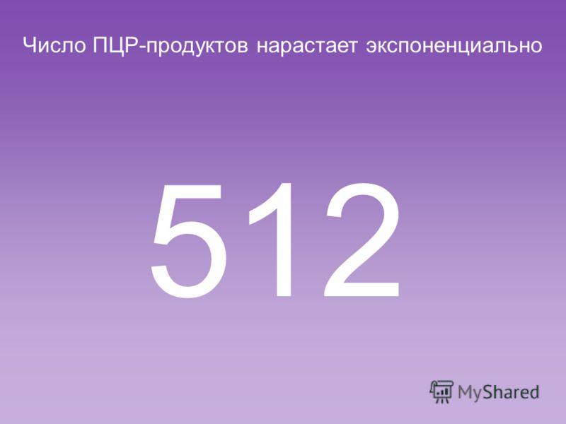 Число ПЦР-продуктов нарастает экспоненциально 256