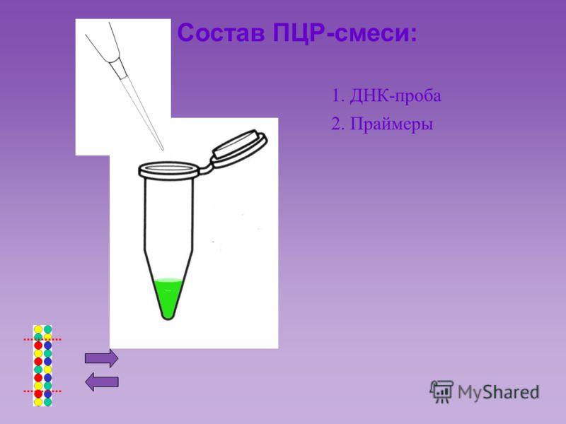 Состав ПЦР-смеси: 1. ДНК-проба