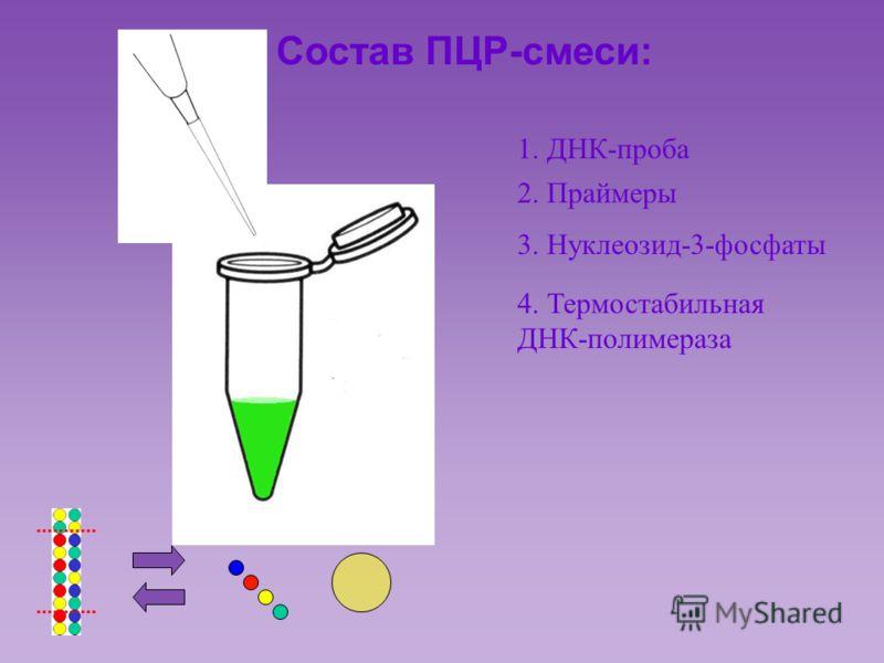 Состав ПЦР-смеси: 1. ДНК-проба 2. Праймеры 3. Нуклеозид-3-фосфаты