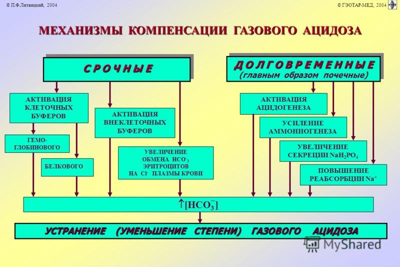 МЕХАНИЗМЫ КОМПЕНСАЦИИ ГАЗОВОГО АЦИДОЗА АКТИВАЦИЯ АЦИДОГЕНЕЗА УСИЛЕНИЕ АММОНИОГЕНЕЗА УВЕЛИЧЕНИЕ СЕКРЕЦИИ NаH 2 PO 4 ПОВЫШЕНИЕ РЕАБСОРБЦИИ Nа + Д О Л Г О В Р Е М Е Н Н Ы Е (главным образом почечные) Д О Л Г О В Р Е М Е Н Н Ы Е (главным образом почечные