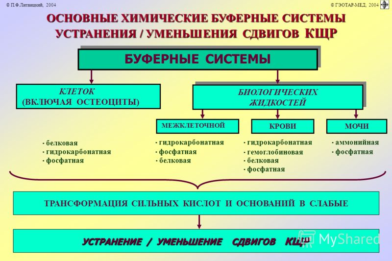 ОСНОВНЫЕ ХИМИЧЕСКИЕ БУФЕРНЫЕ СИСТЕМЫ УСТРАНЕНИЯ / УМЕНЬШЕНИЯ СДВИГОВ КЩР БУФЕРНЫЕ СИСТЕМЫ КРОВИ · белковая · гидрокарбонатная · аммонийная · гидрокарбонатная · фосфатная · гемоглобиновая · фосфатная · белковая · фосфатная МЕЖКЛЕТОЧНОЙ МОЧИ КЛЕТОК (ВК