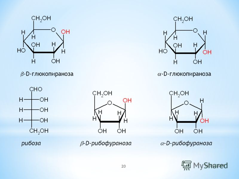 16.05.2013 20 -D-глюкопираноза -D-глюкопираноза рибоза -D-рибофураноза -D-рибофураноза
