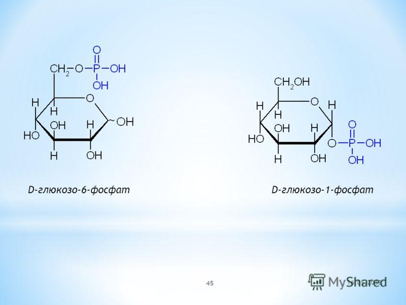 16.05.2013 45 D-глюкозо-6-фосфат D-глюкозо-1-фосфат
