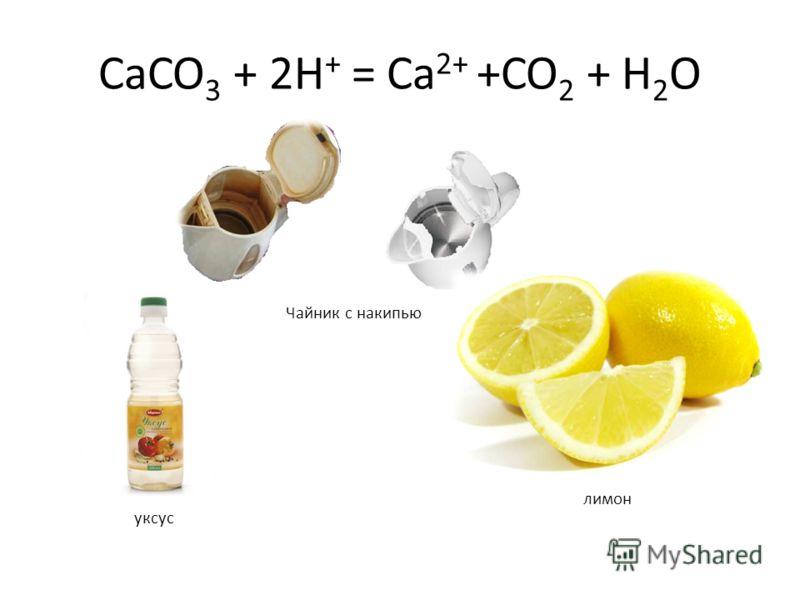CaCO 3 + 2H + = Ca 2+ +CO 2 + H 2 O
