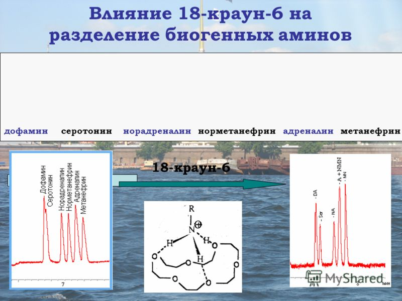 16.05.2013* Влияние 18-краун-6 на разделение биогенных аминов дофамин серотонин норадреналин норметанефрин адреналин метанефрин 18-краун-6