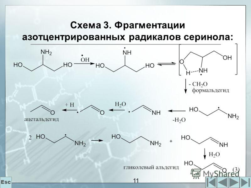 11 Схема 3. Фрагментации азотцентрированных радикалов серинола: Esc