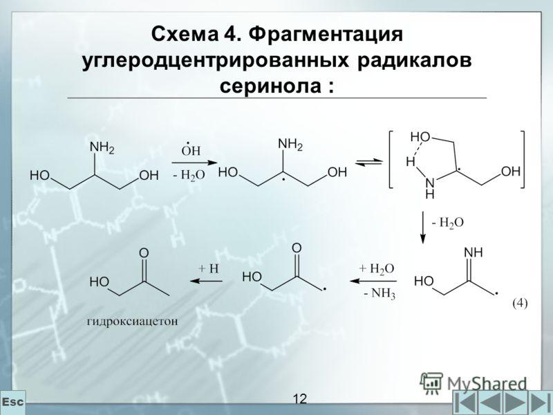12 Схема 4. Фрагментация углеродцентрированных радикалов серинола : Esc