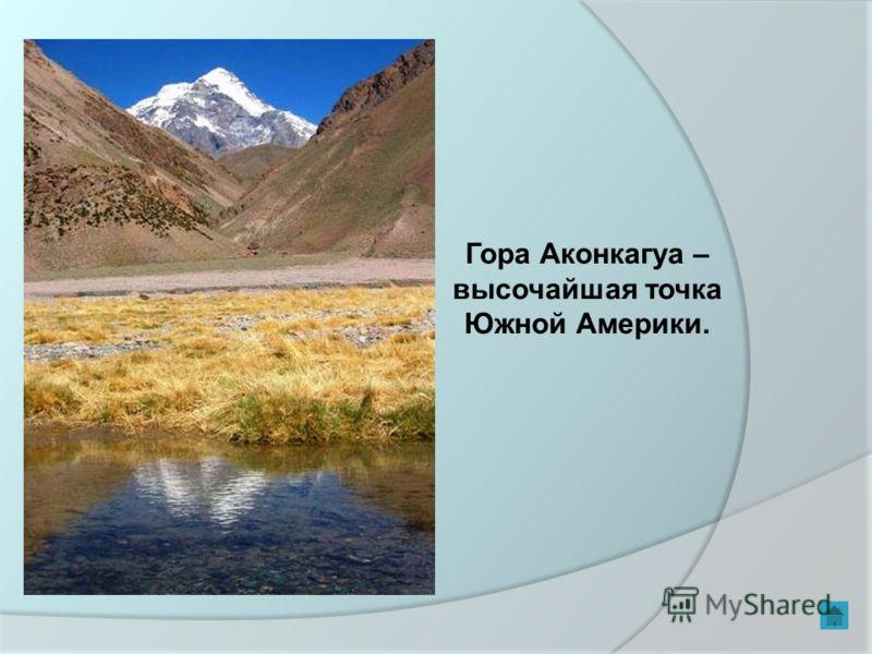 Гора Аконкагуа – высочайшая точка Южной Америки.
