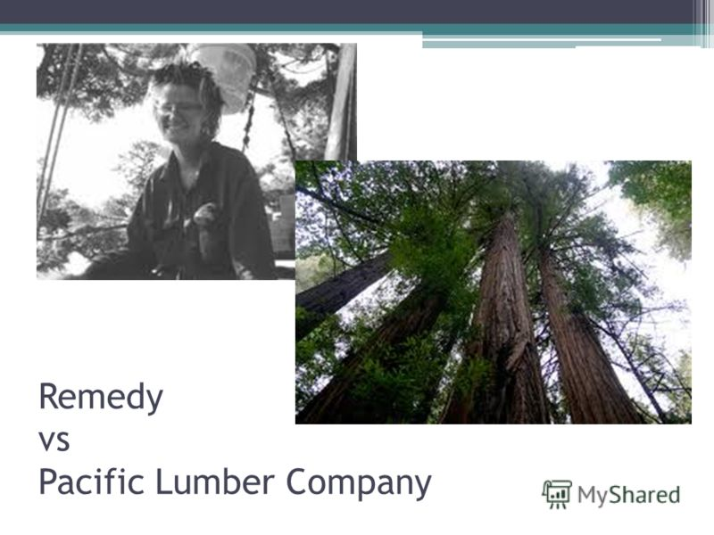 Remedy vs Pacific Lumber Company